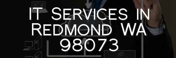 IT Services in Redmond WA 98073
