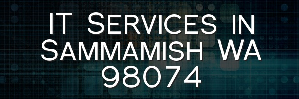 IT Services in Sammamish WA 98074