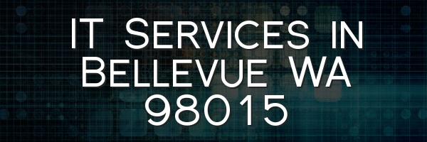IT Services in Bellevue WA 98015