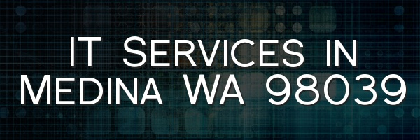 IT Services in Medina WA 98039