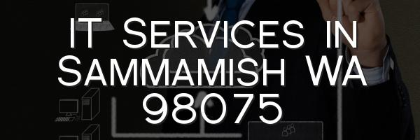IT Services in Sammamish WA 98075